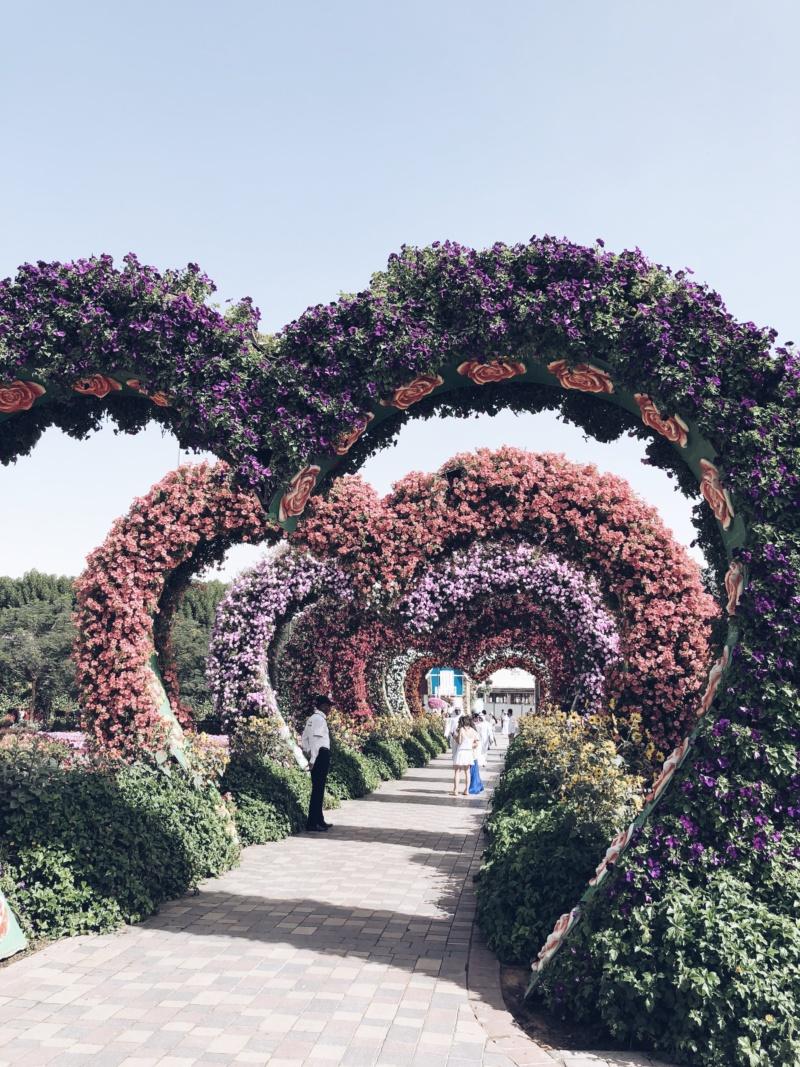 miracle-garden-dubai